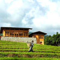 Bhutan luxury hotels review, Uma by COMO Punakha
