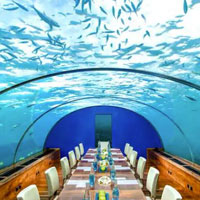 Hold an underwater board meeting at Conrad Maldives - Ithaa Restaurant
