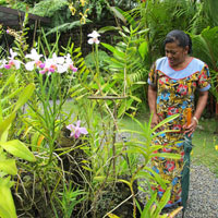 Fiji family fun with the kids - wander the leafy greens of the Garden of the Sleeping Giant