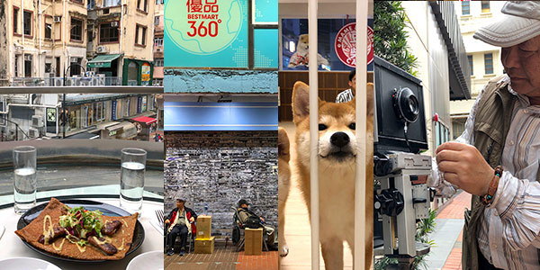 Causeway Bay fun guide to dog cafes, cat cafes, the best crepes in Hong Kong and more