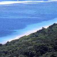 Andamn Islands guide - rainforest and beach