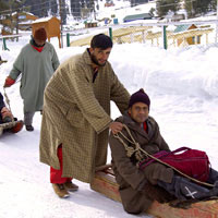 Local sled rides - not for the fainthearted