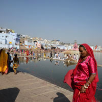 Rajasthan guide, Pushkar camel fair