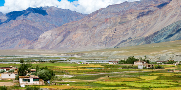 Green fields en route from Karsha to Padum along the end of the Zanskar Valley
