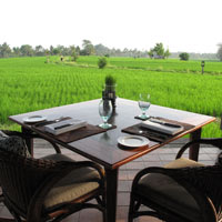 Bali resorts review, Chedi Club Tanah Gajah rice fields, Ubud