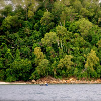 Sabah adventure guide, jungle islands