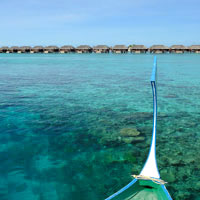 Maldives fun guide for honeymoons, Ayada, a snorkelling haven