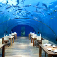 Conrad Maldives's exciting Ithaa underwater restaurant