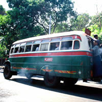 Yangon transport, bus