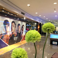 Manila shopping guide, Greenbelt 4 displays