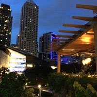 Greenbelt offers some good Manila dining options and bars