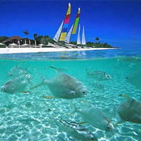 Top Philippines luxury resorts, Amanpulo snorkelling