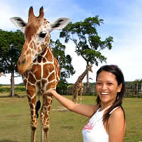 Palawan safaris and wildlife, Calauit
