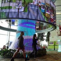 At Changi Terminal 1, upload photos and video to the Social Tree