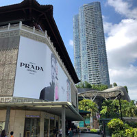 PRADA billboard at Tangs on Scotts