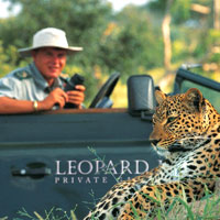 Close up leopard sightings are possible