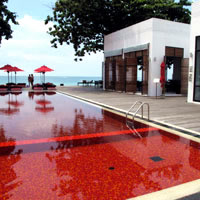 Best Koh Samui boutique resorts, The Library's blood red pool