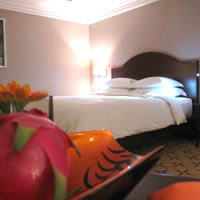 Saigon business hotels near airport, Movenpick