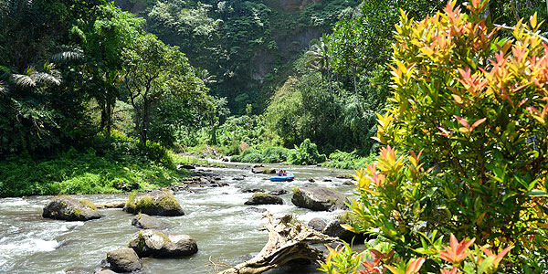 Bali fun guide - whitewater rafting along the Ayung River, Ubud