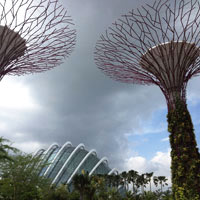 Gardens by the Bay - Futuristic