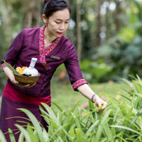 Top Thailand spa resorts, Four Seasons Chiang Mai, collecting spa herbs